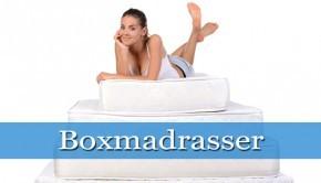 boxmadrasser thumpnail