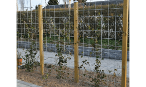 Hortus rionet espalier i galv. tillaegsfag inkl. beslag og stolpe 90 x 150 cm